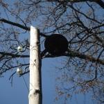 Столб с фонарем на городском кладбище